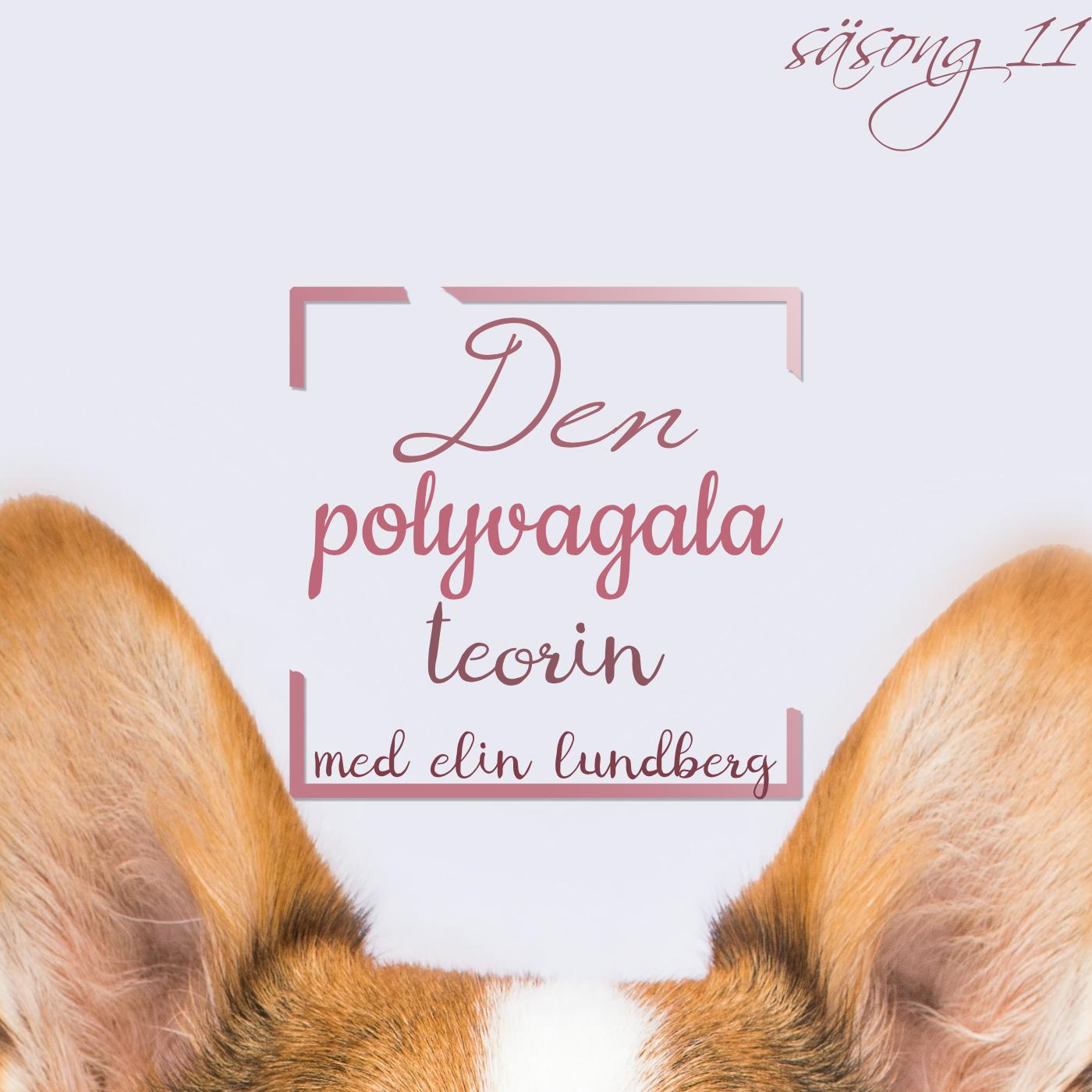 Den polyvagala teorin