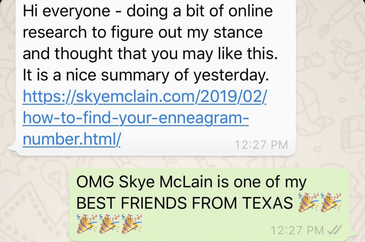 Skye's Enneagram Moment