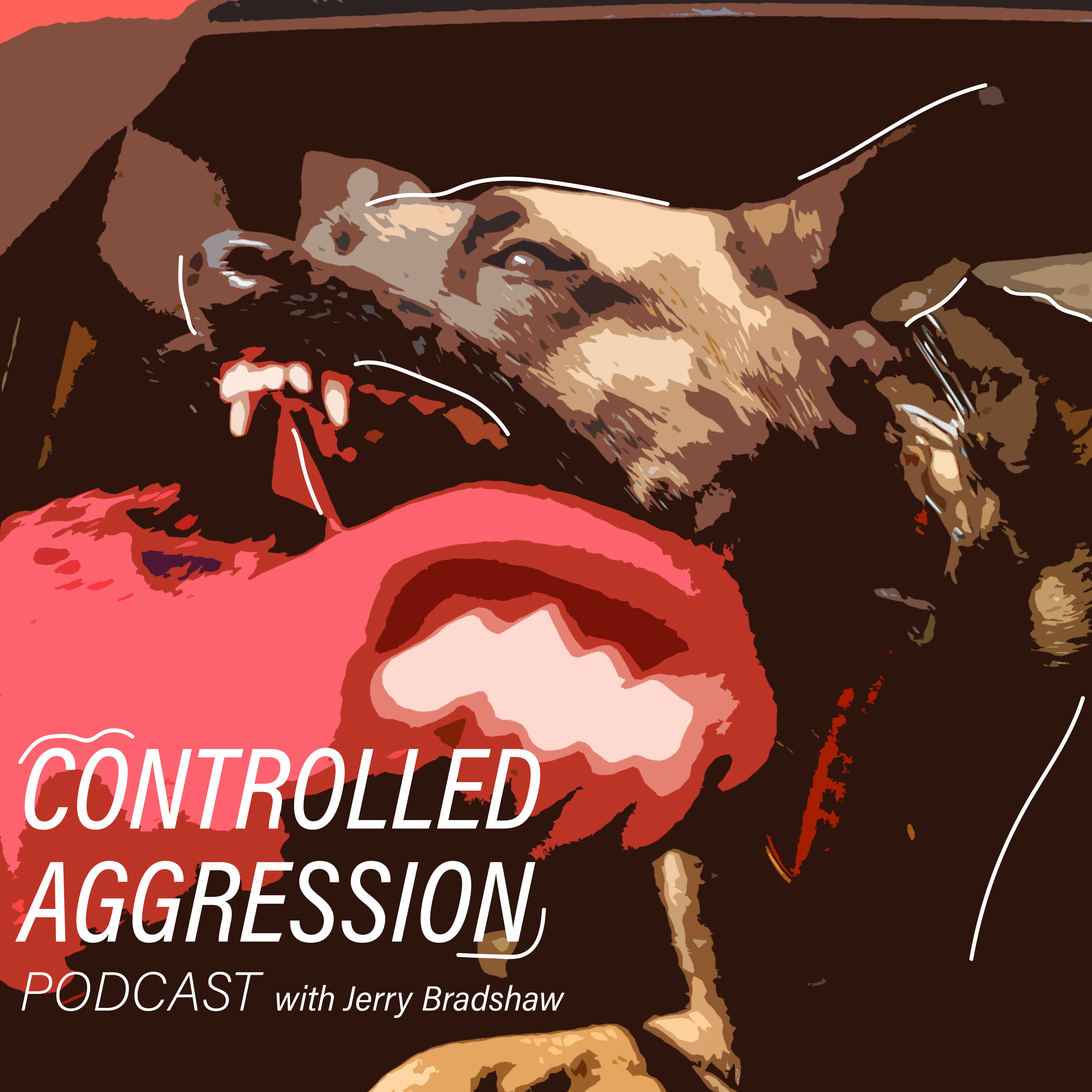 Controlled Aggression show art