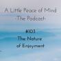 Artwork for Episode 103 - The Nature of Enjoyment