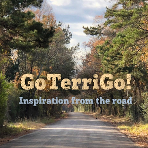 On the Road Again with GoTerriGo!