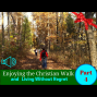 Artwork for Strengthen Your Christian Character - Episode 009 (Part 4 Enjoying The Christian Walk and Living Without Regret)