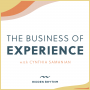 Artwork for Welcome to The Business of Experience