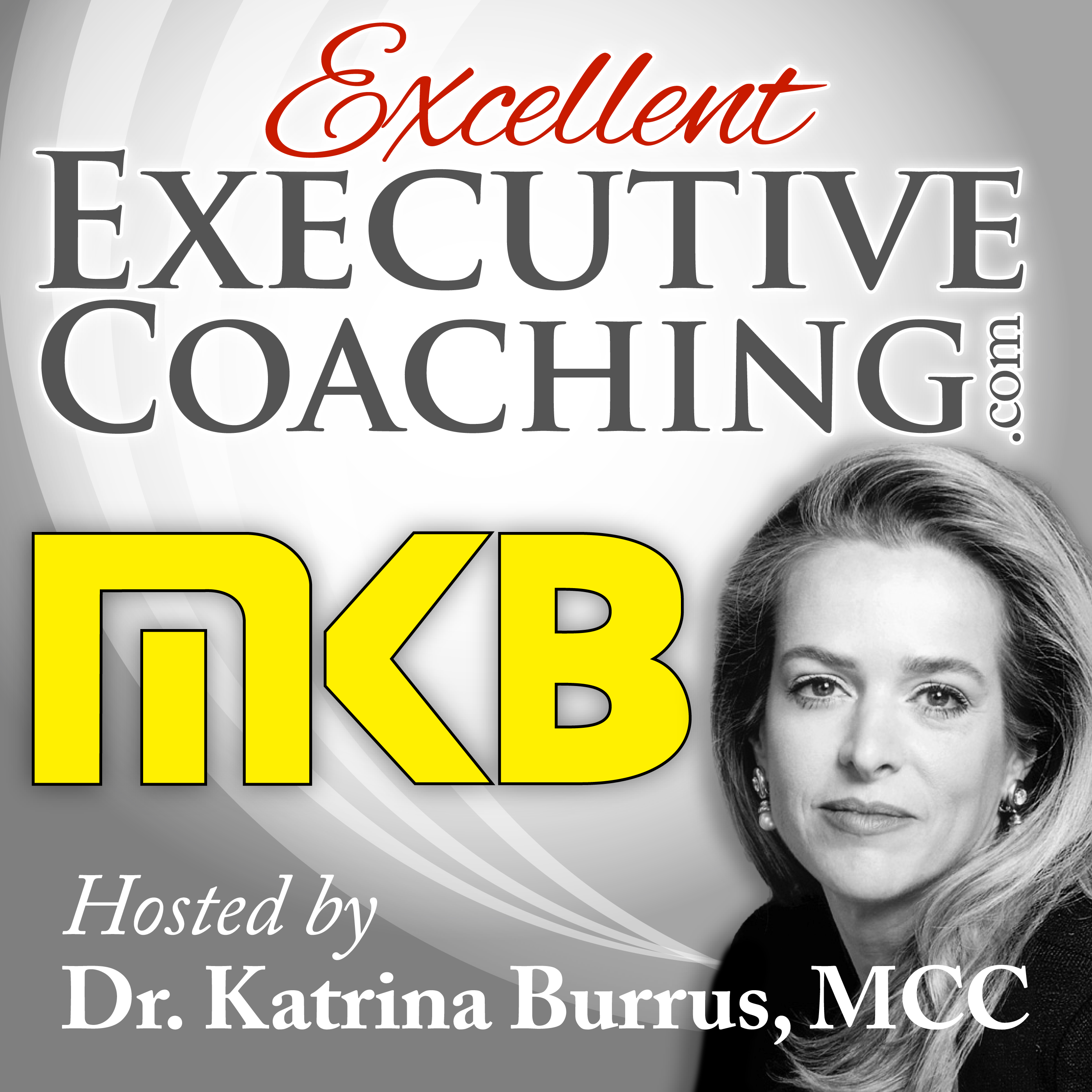 Excellent Executive Coaching: Bringing Your Coaching One Step Closer to Excelling show art
