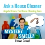 Artwork for How to Get Rid of a Mystery Smell in an Airbnb