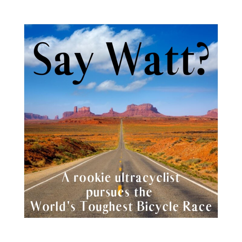 Say Watt? show art