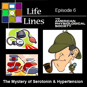 Episode 6: The Mystery of Serotonin & Hypertension