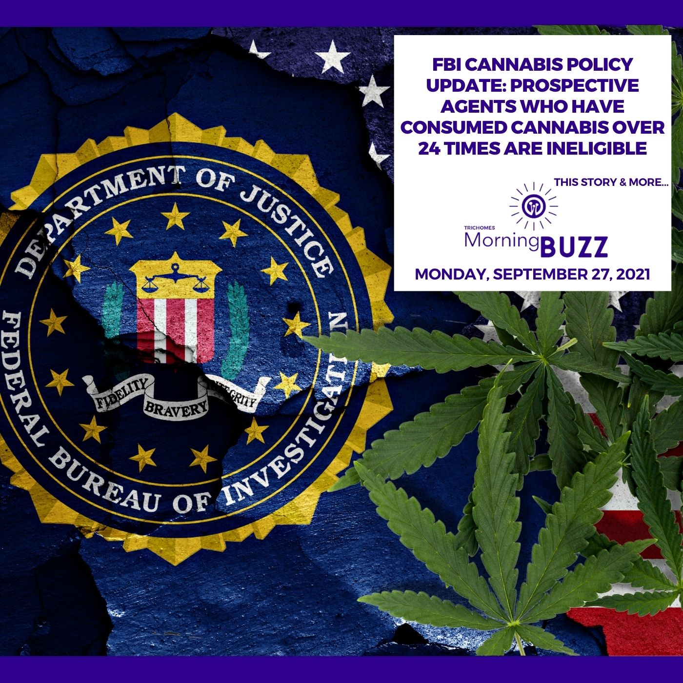 FBI Cannabis Policy Update: Prospective Agents Who Have Consumed Cannabis Over 24 Times Are Ineligible show art