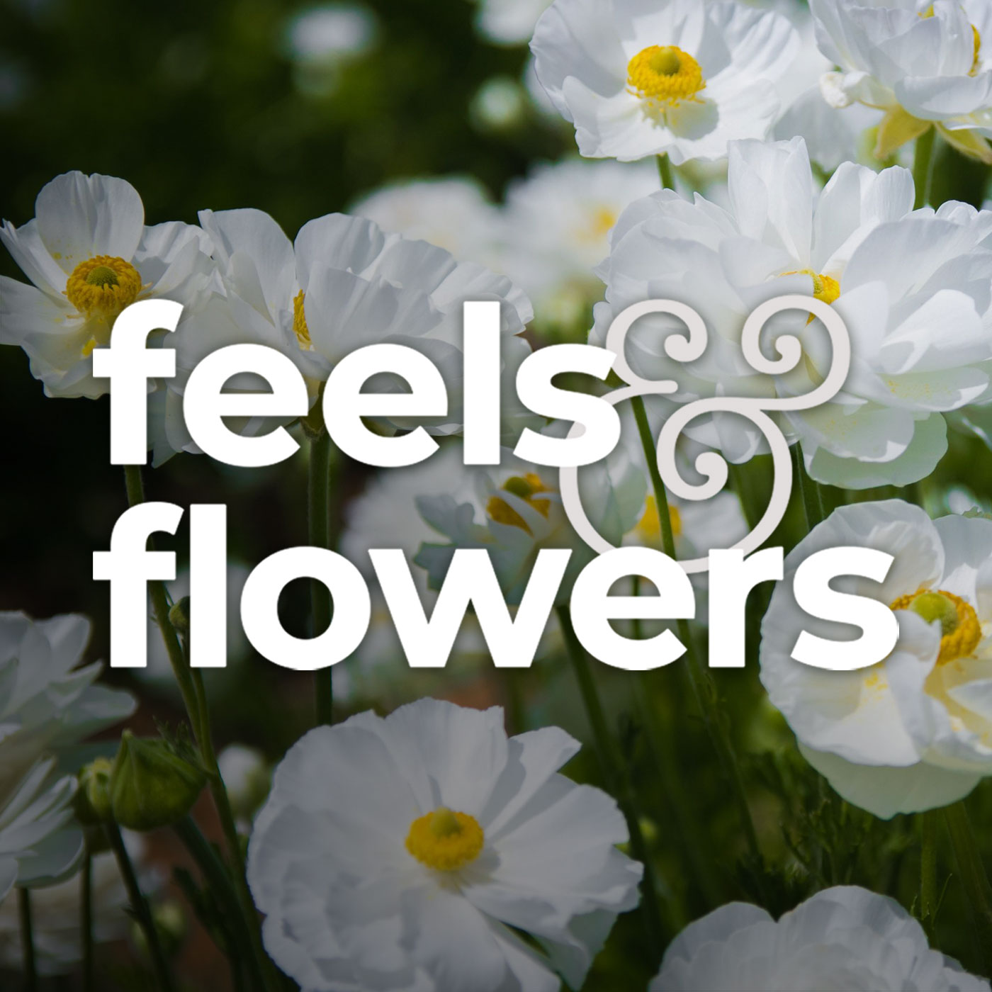 Feels and Flowers show art