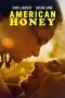 "Artwork for 2016 Film ""American Honey"" gets The Treatment"