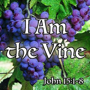 FBP 499 - I Am The Vine