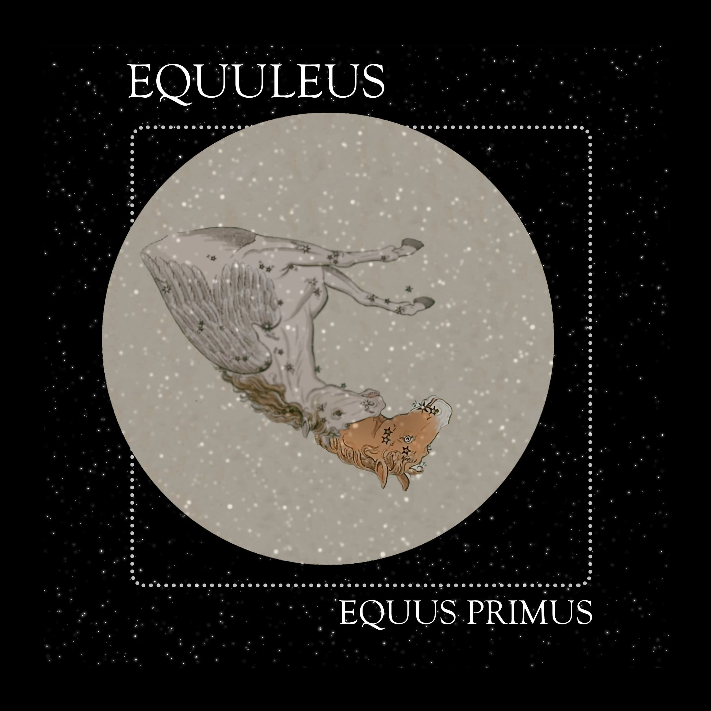 12 Equus Primus: The Constellation of Equuleus