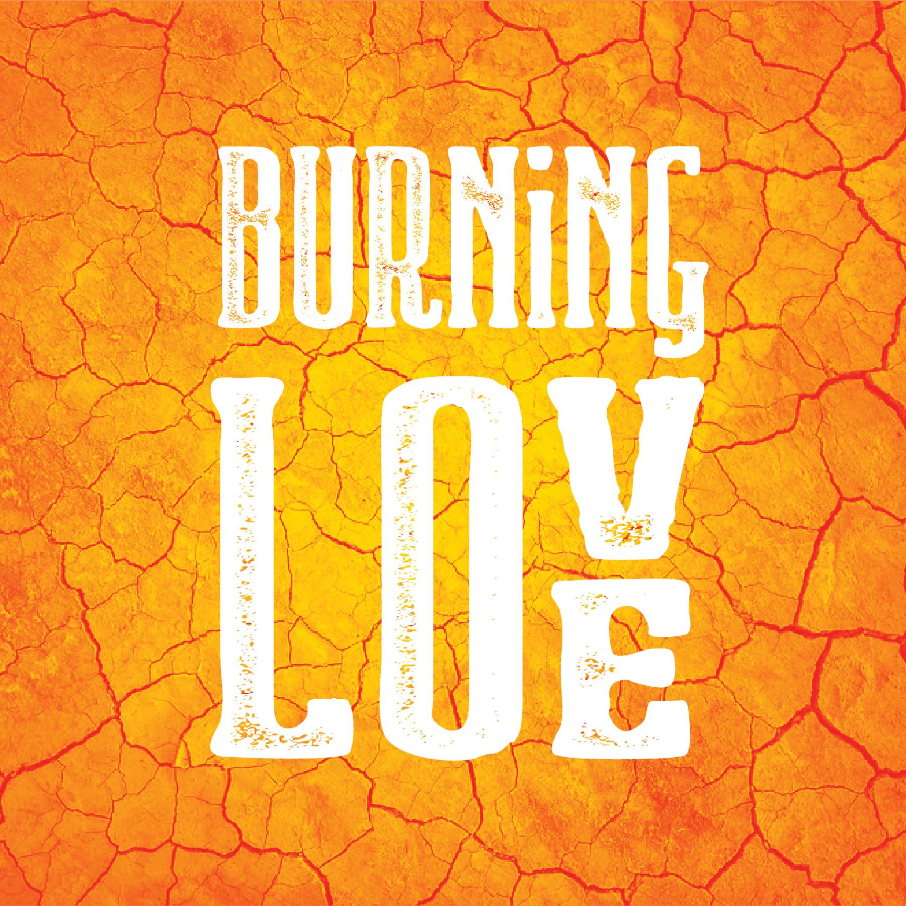 Burning Love show art