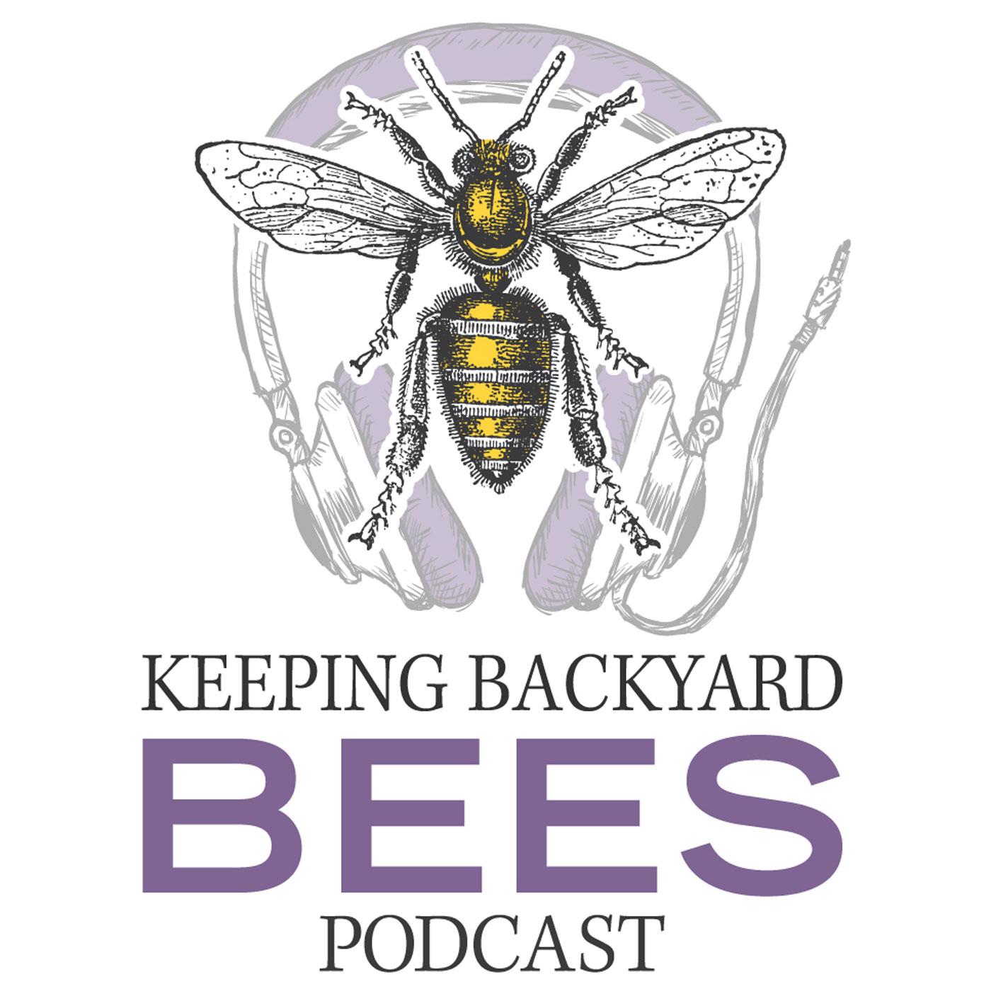 Keeping Backyard Bees show art