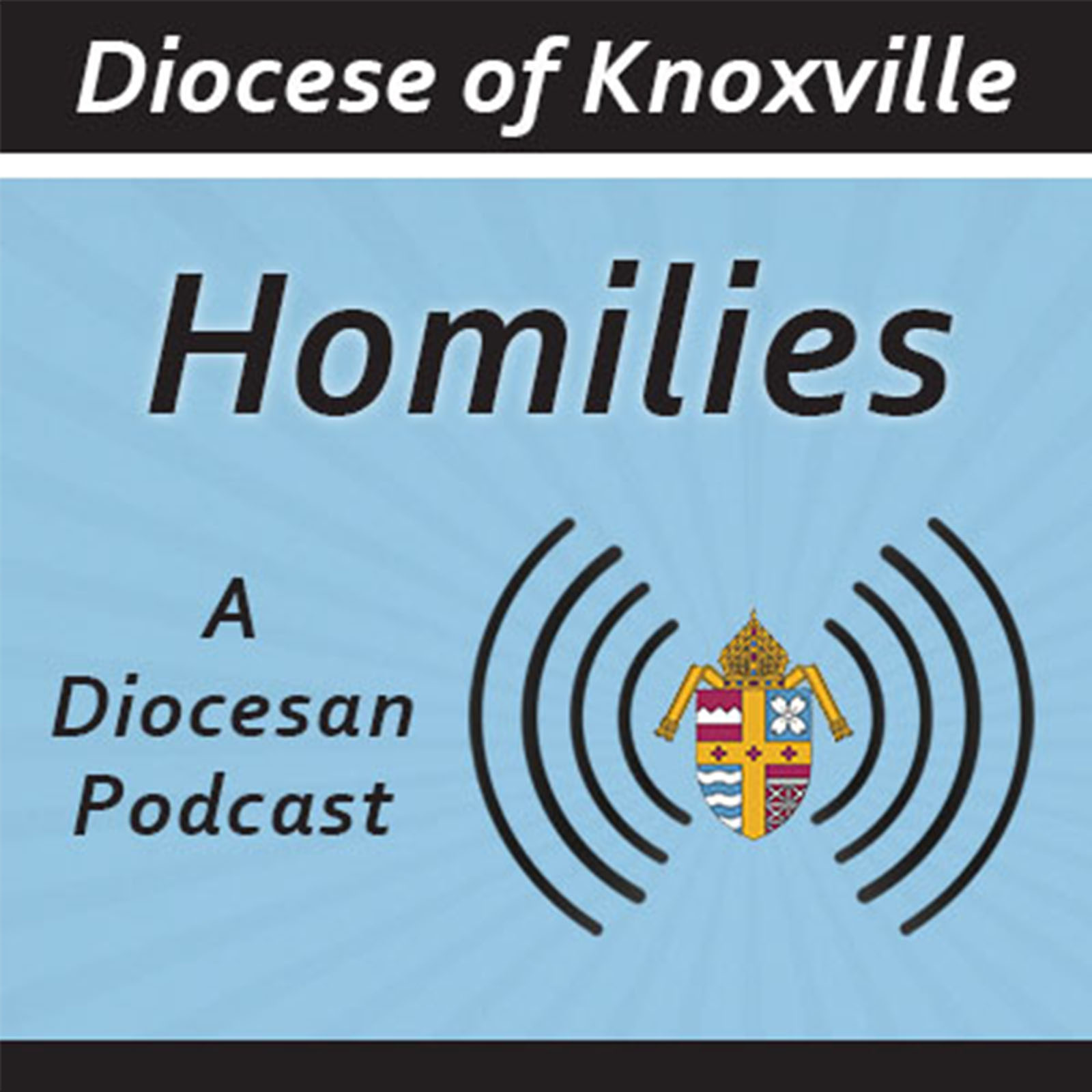 Diocese of Knoxville Homilies show art