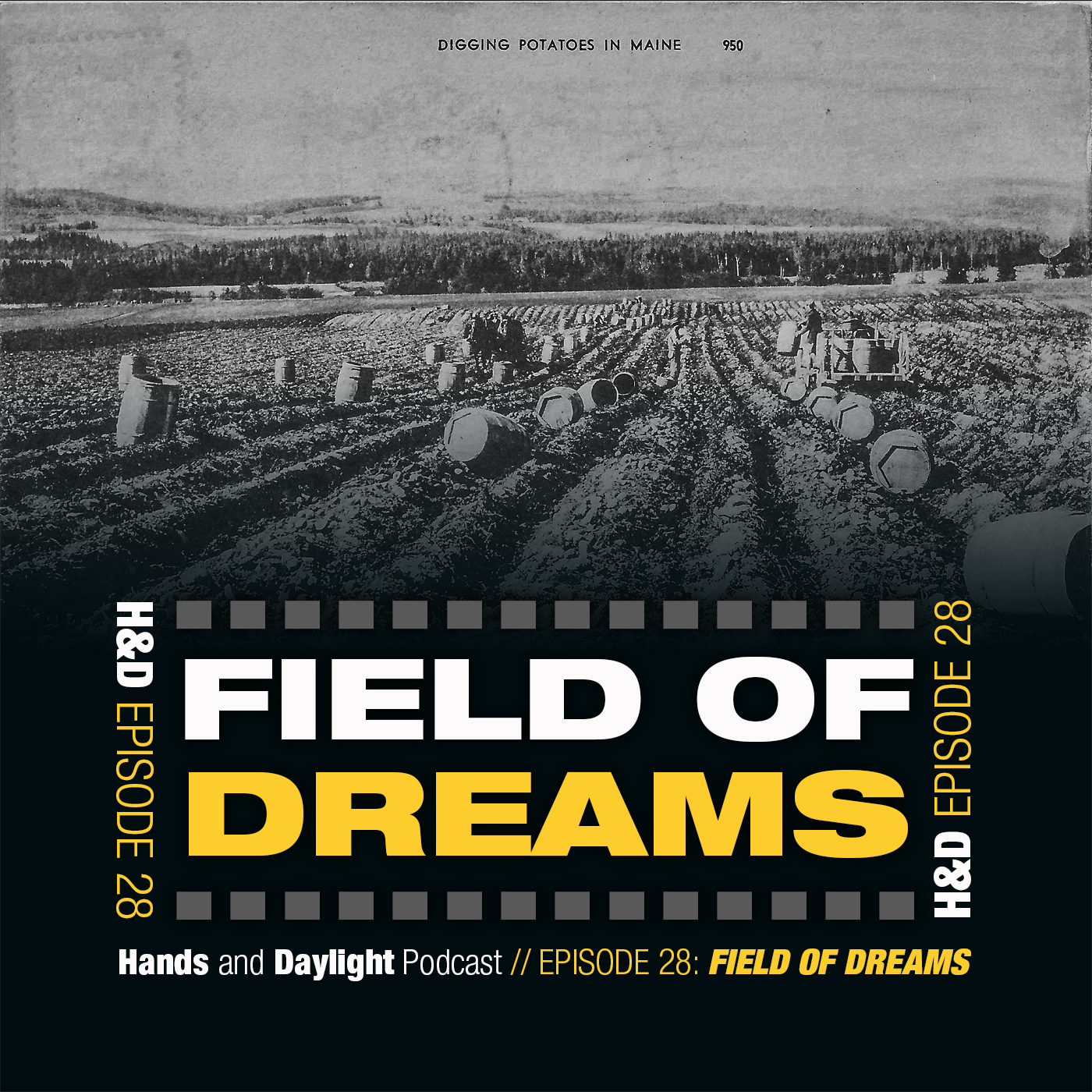 E28: FIELD OF DREAMS