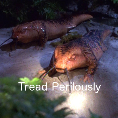 Tread Perilously -- Star Trek Voyager: Theshold