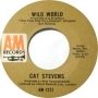 Artwork for Cat Stevens - Wild World - Time Warp Song of the Day