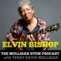 Artwork for Ep 38 | Elvin Bishop