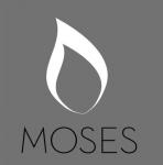 Moses, Week 5:  August 11, 2013